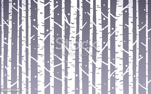Birch trees background abstract.
