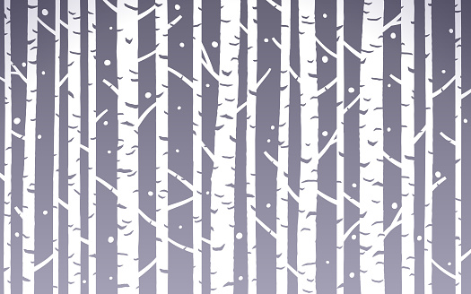 Birch Tree Abstract Winter Background