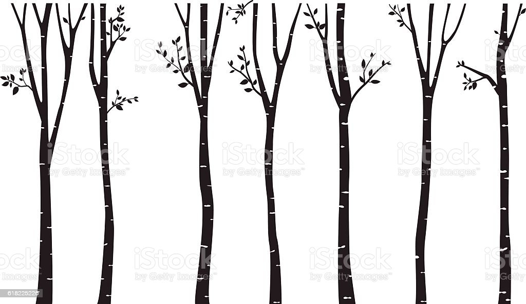 Birch Tree Silhouette Background Stock Vector Art Amp More