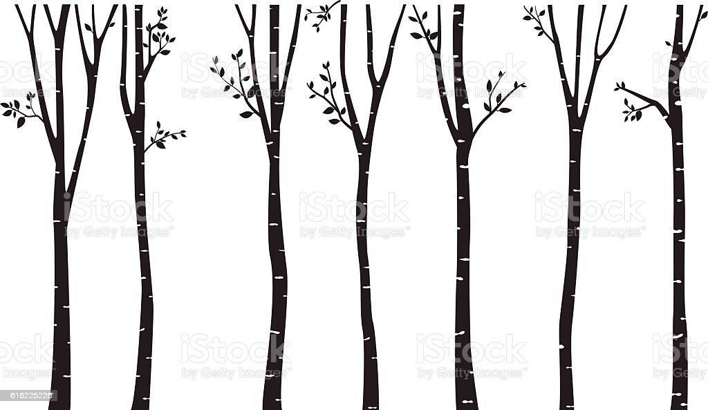royalty free birch tree clip art vector images illustrations istock rh istockphoto com birch tree background clipart Birch Tree Graphic