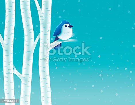 Blue bird or bluejay in a birch tree winter snowing background concept. EPS 10 file. Transparency effects used on highlight elements.