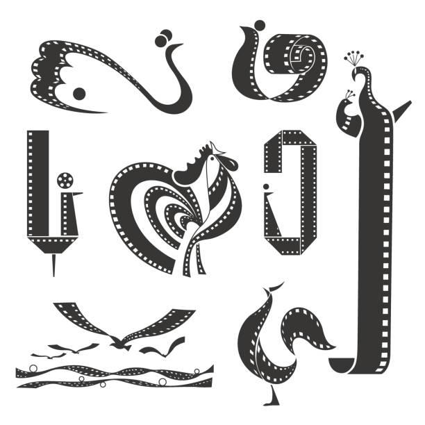 vogel und flipp-streifen-sammlung - tierfotografie stock-grafiken, -clipart, -cartoons und -symbole