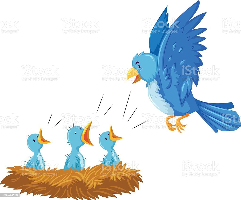 Bird and its babies in the nest vector art illustration