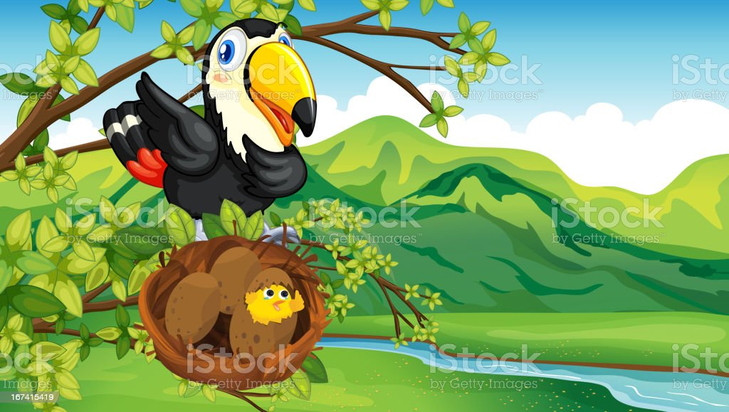 Bird and nest royalty-free bird and nest stock vector art & more images of animal