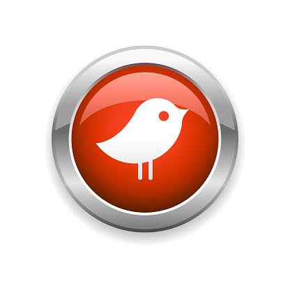Bird and Social Media Glossy Icon