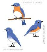 Bird Bluebird Set Cartoon Vector Illustration