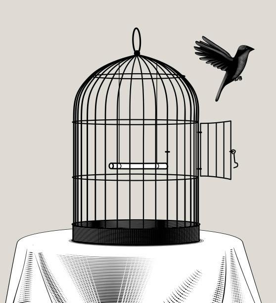stockillustraties, clipart, cartoons en iconen met vogelkooi en een zwarte vogel vliegen weg - kooi