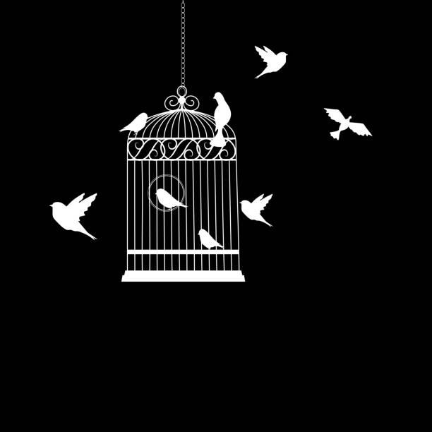 illustrations, cliparts, dessins animés et icônes de cage à oiseaux avec des oiseaux qui volent illustration vectorielle - dessin cage a oiseaux