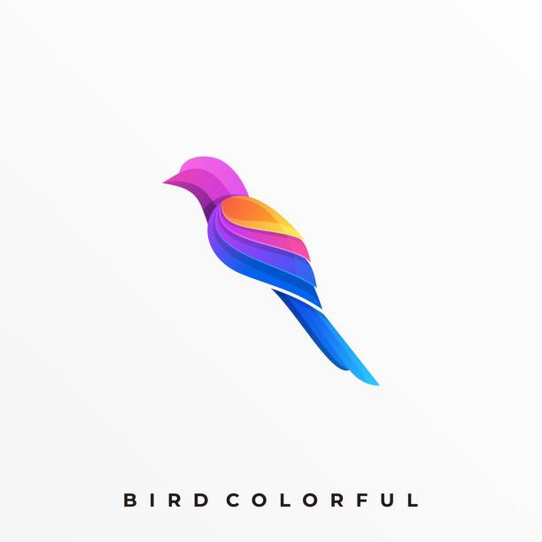 Bird Colorful Illustration Vector Template Bird Colorful Illustration Vector Template. Suitable for Creative Industry, Multimedia, entertainment, Educations, Shop, and any related business. finch stock illustrations