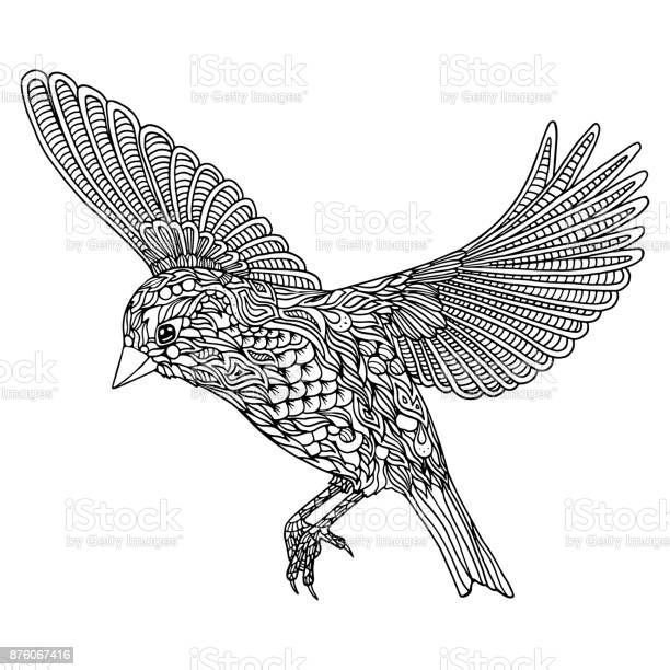 Bird coloring page greenfinch vector id876067416?b=1&k=6&m=876067416&s=612x612&h=qx 8pdnmdk9fpwvrbh cug i0g4xwcdsrkctrr0 ytu=