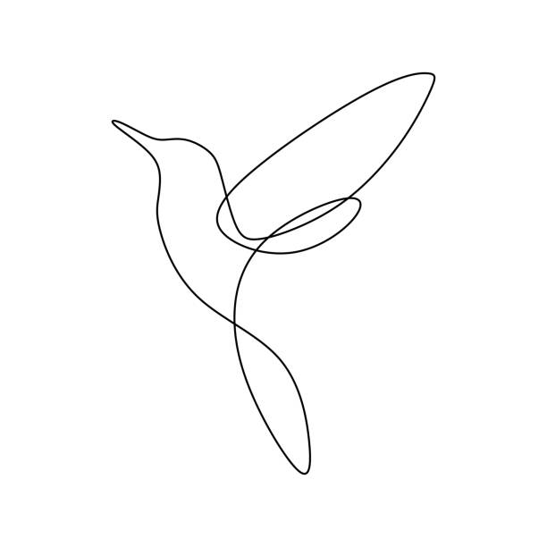 bird continuous line drawing vector illustration minimalist design good for logo branding and abstract minimalism poster - hummingbird stock illustrations