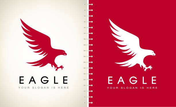 illustrations, cliparts, dessins animés et icônes de conception de vecteur d'aigle d'oiseau. - aigle