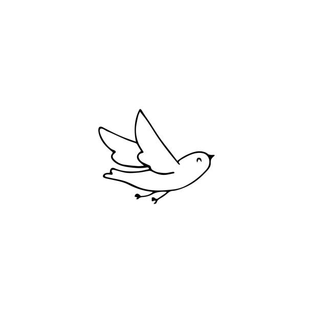 Bird  element Vector hand drawn objects, dove bird. Feminine  element, romantic wedding clipart. For business branding and identity. Black on white isolated symbol. bird drawings stock illustrations