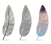 Bird feather icon, writing symbol. Fallen fluffy feathers isolated. Exotic soft feather set. Vector illustration