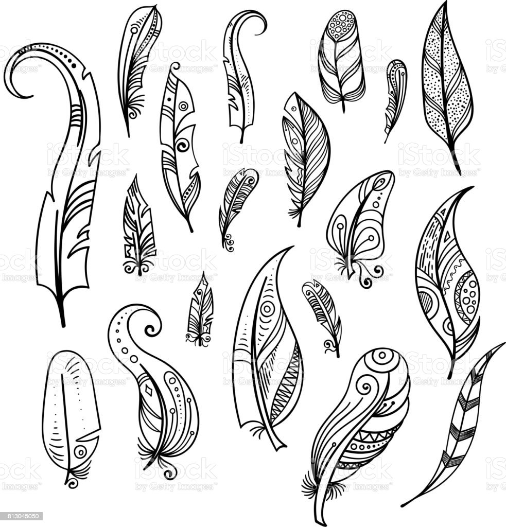 bird feathers drawing indian elements set isolate on
