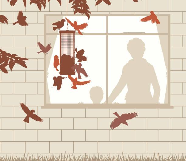 bird feeder entertainment - bird watching stock illustrations, clip art, cartoons, & icons
