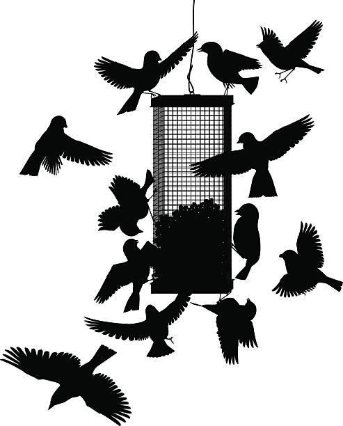 Bird feeder vector art illustration