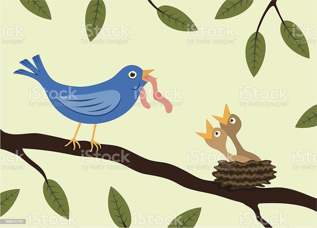 Bird feeding hungry chicks royalty-free stock vector art