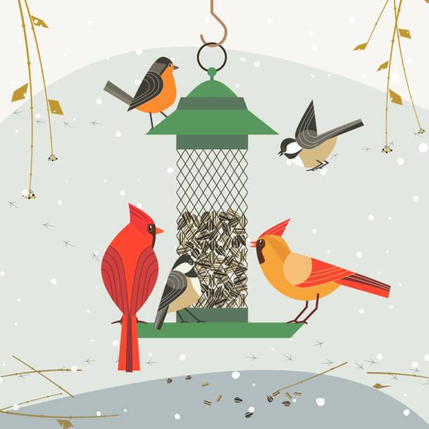 bird feeding icon-1 - bird watching stock illustrations, clip art, cartoons, & icons