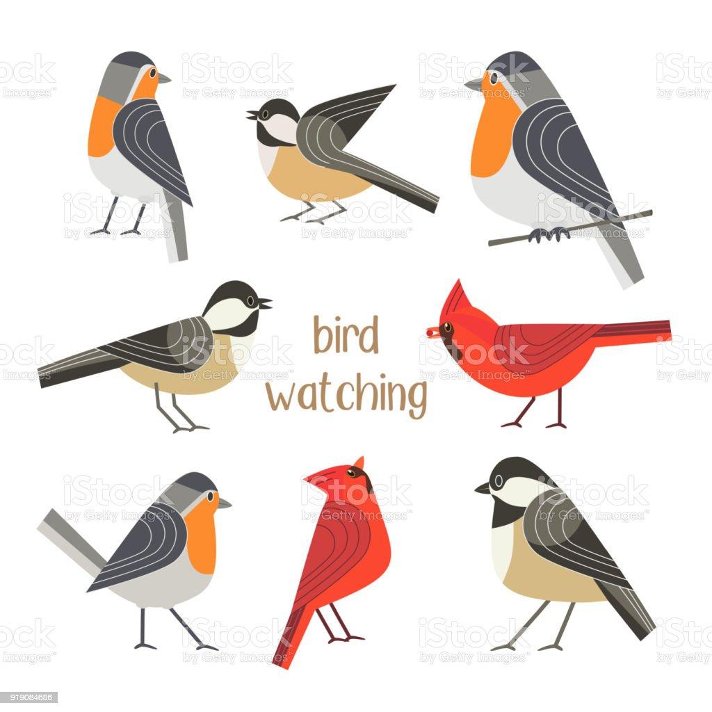 Affiche alimentation oiseaux - Illustration vectorielle