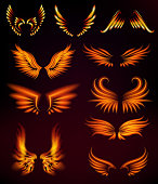 Bird fire wings fantasy feather burning fly mystic glow fiery burn hot art vector illustration on black