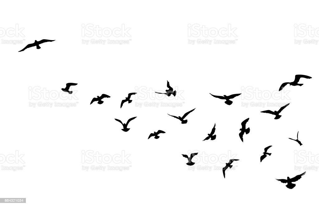 Vogel-Herde über blauen Himmelshintergrund fliegen. Tierische Wildlife. - Lizenzfrei Bildhintergrund Vektorgrafik