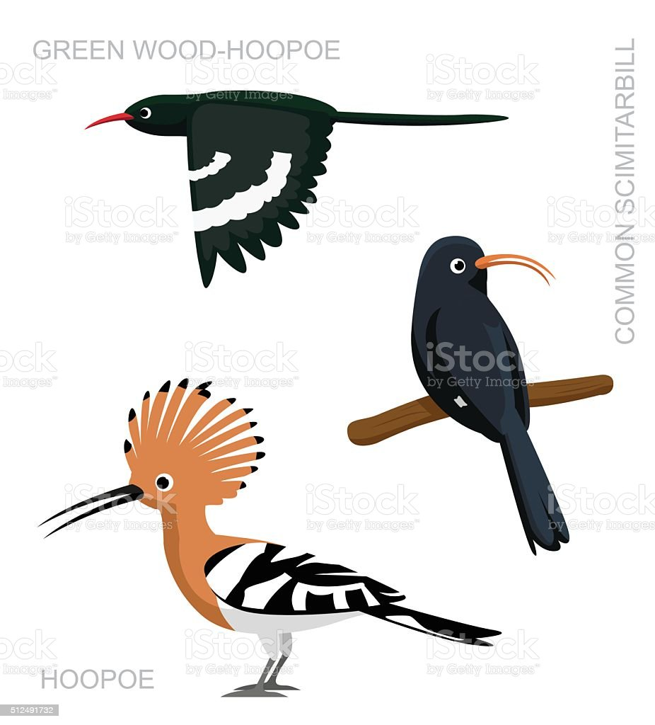 royalty free hoopoe clip art vector images