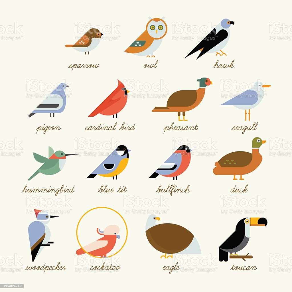 royalty free chickadee clip art vector images illustrations istock rh istockphoto com Chickadee Outline black capped chickadee clipart