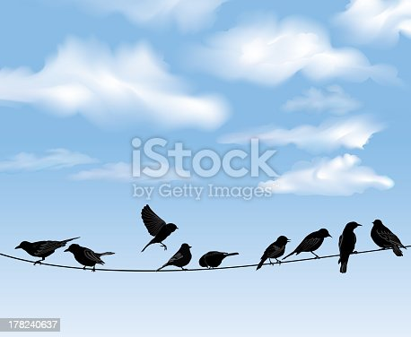 Set of birds ыilhouette sitting on wires over blue sky background. A vector illustration