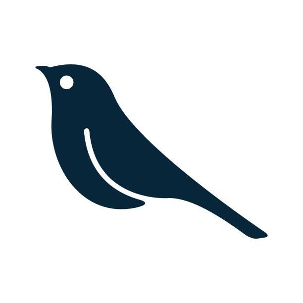 bildbanksillustrationer, clip art samt tecknat material och ikoner med fågel ikon - fågel