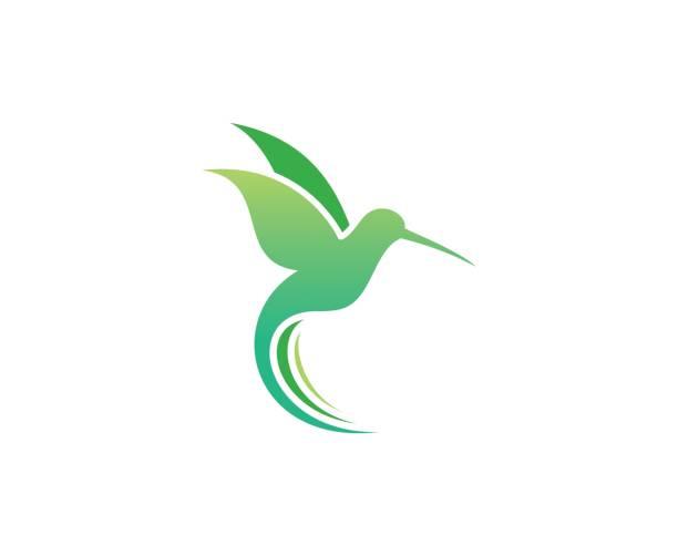bird icon - hummingbird stock illustrations