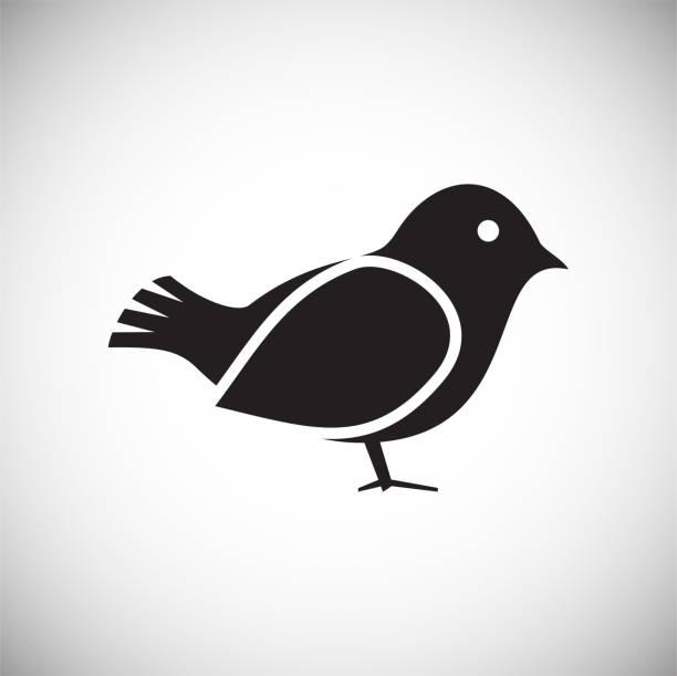 ilustrações, clipart, desenhos animados e ícones de ícones de pássaro definido em fundo branco para gráfico e web design, sinal vector simples moderno. conceito de internet. símbolo da moda para botão de web design web site ou aplicativo móvel. - observação de pássaros