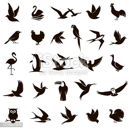 collection of various black bird icons isolated on white background