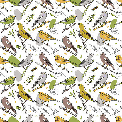 Bird illustration seamless pattern. Collection of cute hand drawn bird doodles. Line style in minimalism on white vector picture