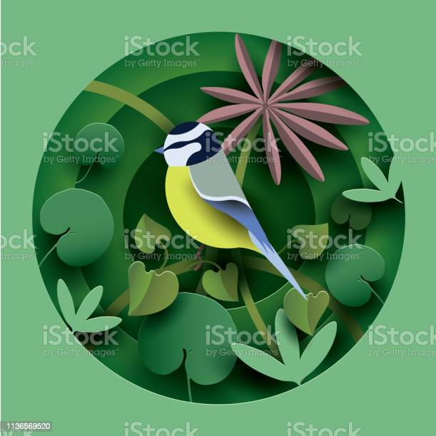 Bird in the thickets of plants vector id1136569520?b=1&k=6&m=1136569520&s=612x612&h= 9wivctq7ueq6769c01df7vvgm2kdw4hb7qounocspi=