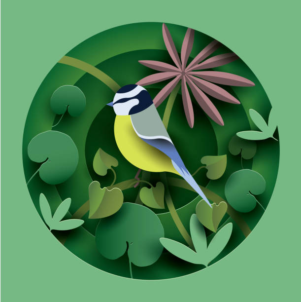 bird in the thickets of plants. - animals background stock illustrations