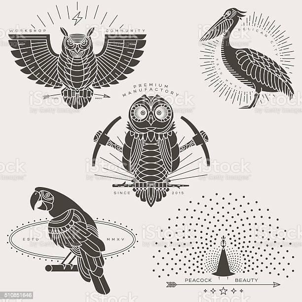 Bird labels vector id510851646?b=1&k=6&m=510851646&s=612x612&h=ylegwlgwxf pkvqfjegj8nqwwjvxu3 hgiq9ervsjo8=