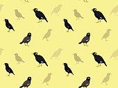 Bird Myna Wallpaper