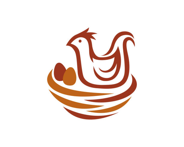 Bird Nest Symbol Template Design Vector, Emblem, Design Concept, Creative Symbol, Icon Bird Nest Symbol Template Design Vector, Emblem, Design Concept, Creative Symbol, Icon nest egg stock illustrations