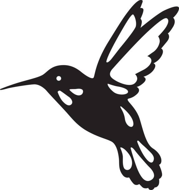 bird of hummingbirds. - hummingbird stock illustrations