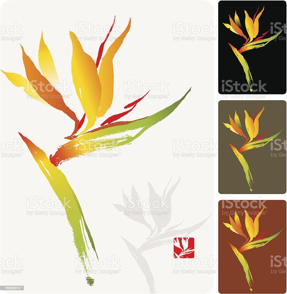 Bird of Paradise, a Tropical Flower royalty-free stock vector art