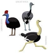 Bird Ostrich Set Cartoon Vector Illustration