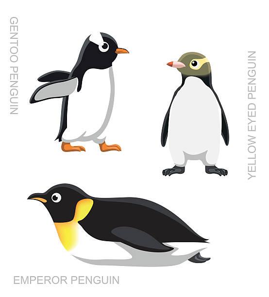 Bird Penguin Set Cartoon Vector Illustration Animal Character EPS10 File Format emperor penguin stock illustrations