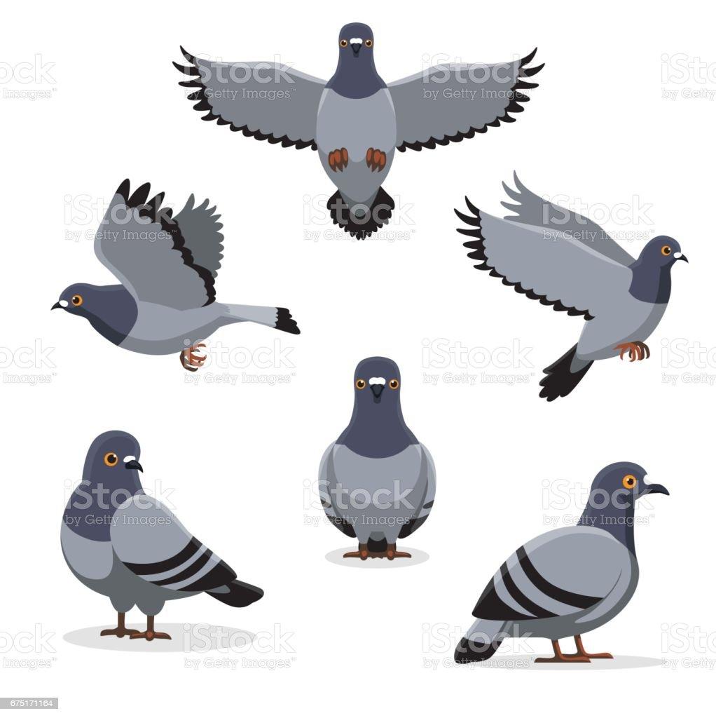 royalty free pigeon clip art vector images illustrations istock rh istockphoto com pigeon clipart mo willems pigeon clip art images
