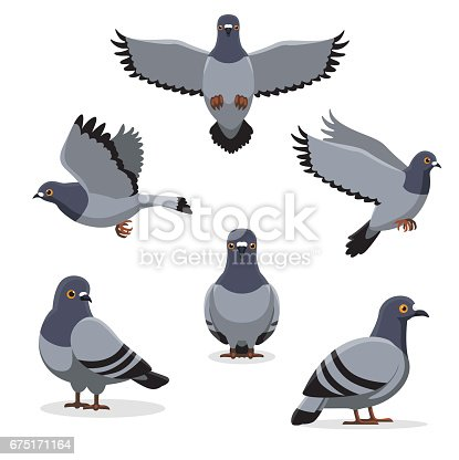 Pigeon illustration - photo#54