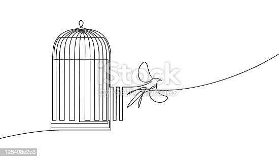 istock Bird released from birdcage 1284985253