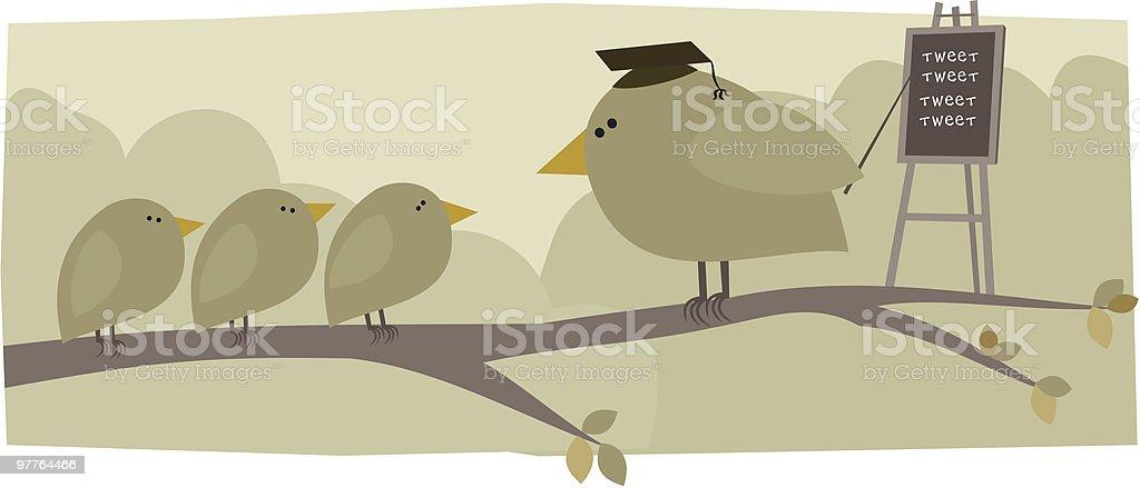 Bird School royalty-free bird school stock vector art & more images of animal themes