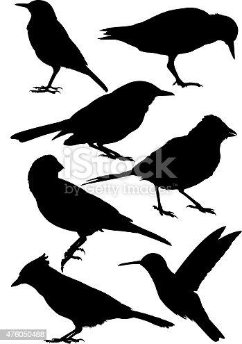 istock Bird Silhouette 476050488