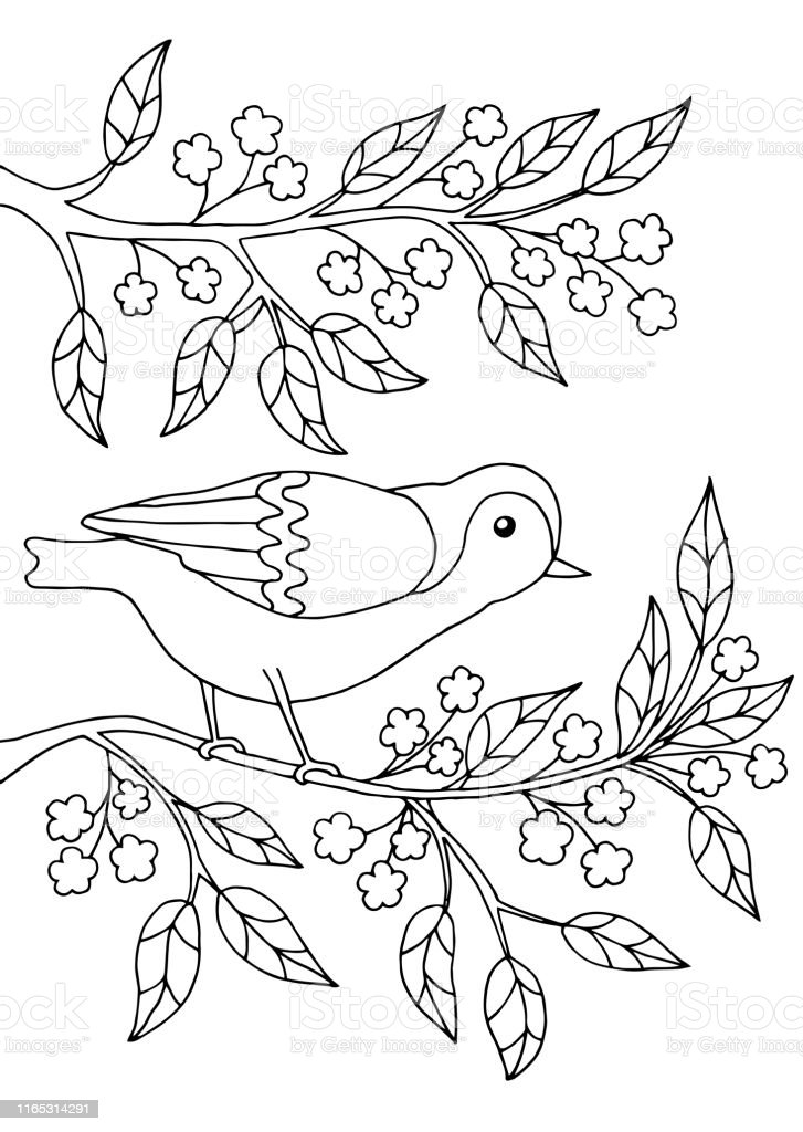 Bird Sitting On A Branch Coloring Page Stock Illustration Download Image Now Istock