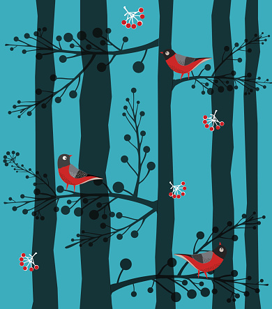 Bird  Sitting on the Tree, Forest, Winter